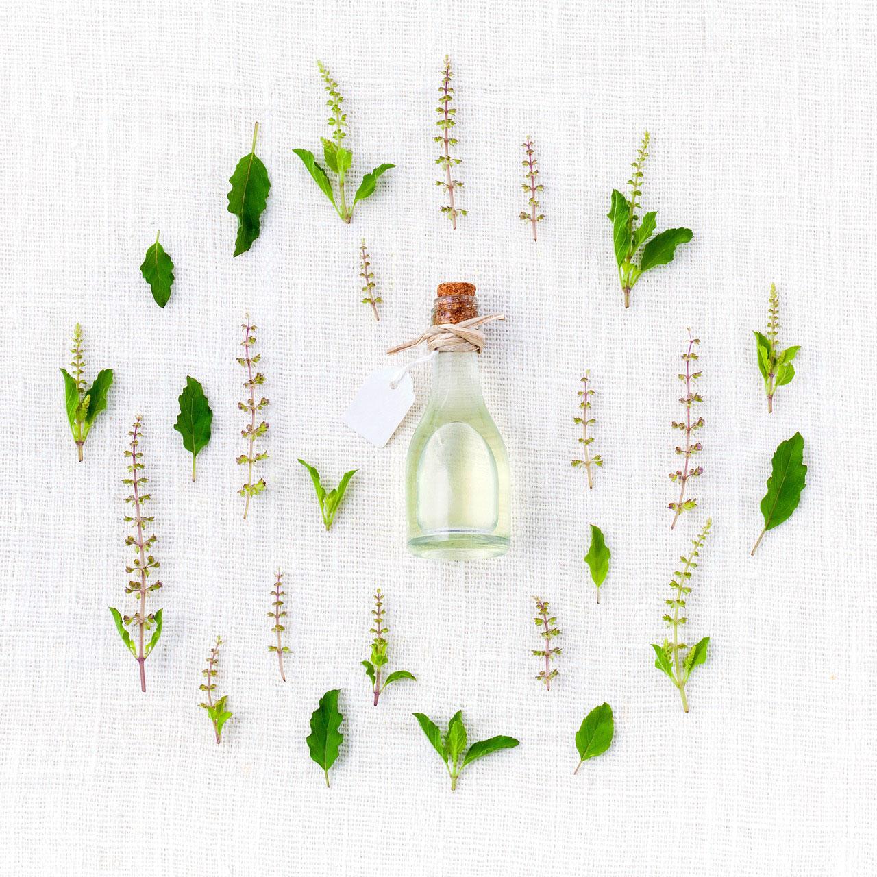 Herb Garden Thumbnail