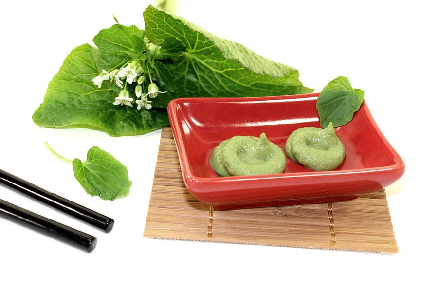 Learn about Nature  Wasabi  Learn about Nature # Wasbak Mobiel_001629