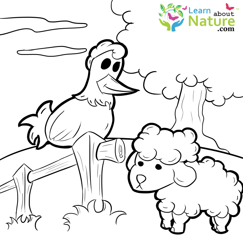 Farm Animals Coloring Page - Learn About Nature