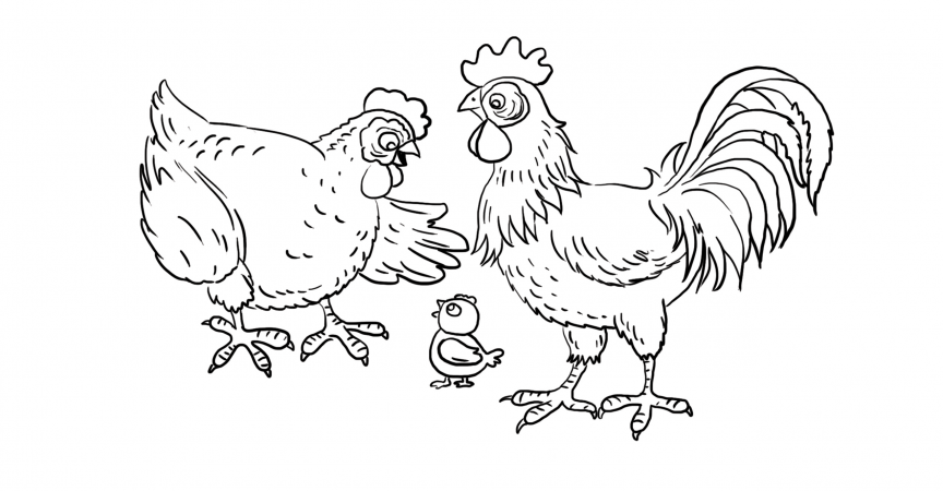 Farm Animals Coloring Page Learn About Nature