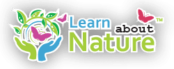 Learn About Nature