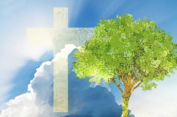 tree-of-life-01