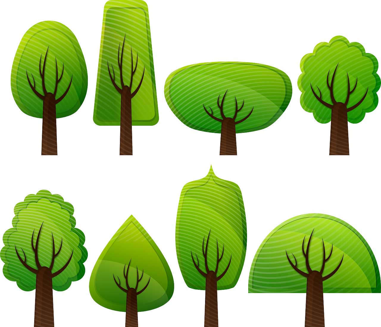 Learn about Nature | Types of Trees - Learn about Nature